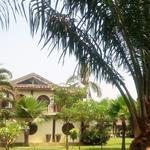 Biệt thự nhà vườn cực đẹp ngay quận 9