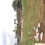 Đất Vườn Cách trục đường Nguyễn Xuển 50m tại P. Trường Thạnh Quận 9