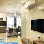 Mở bán 60 suất nội bộ căn hộ Carillon 7 Q. Tân Phú, CK 5%, giá 1,7 tỷ/ 2PN
