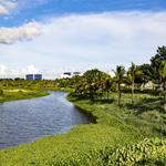 Mở bán đất biệt thự ven sông R1 khu đô thị FPT CITY Đà Nẵng