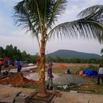 Đất nền dự án Phú Quốc Kiên Giang dự án Ocean Land 11, 4-5 triệu/m2 diện tích 300-1000m2