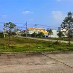 Cần bán gấp 300m2 đất thổ cư hết gần chợ, trường ngay khu đô thị mới