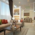 Bán siêu biệt thự cao cấp 2MT, khu sân bay, Tân Bình, DT: 14 x 30m giá chỉ: 40 tỷ