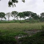 Bán Gấp Lô Đất 250M2 Tỉnh Lộ 10 Đức Hòa Hạ,Huyện Đức Hòa.LIÊN HỆ 0938 452 454