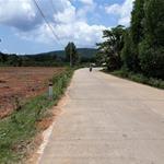 Bán đất Cửa Cạn 9000m2 mt đường, dân đông, đầu tư sinh lợi. lh: 0918 939 168