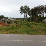 Bán gấp lô đất 2000m2 mặt tiền Búng Gội đã tách thửa 14 lô giá 24tỷ