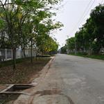 Đất mặt tiền Tỉnh Lộ 10, SH riêng, xây tự do, lộ giới 18m, giá chỉ 6 tr/m2