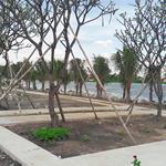 Bán đất 2 MT, 240m2, P. An Phú Đông, quận 12, nhìn ra sông Sài Gòn