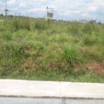 bán đất mt 14m nằm gần trần văn giàu, bình chánh, shr, thổ cư 100%, giá 700tr.