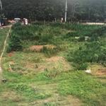 Cần bán đất chính chủ tại huyện Củ Chi gần khu du lịch Một Thoáng Việt Nam