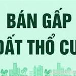 Tôi Bạch Hòa cần bán gấp 450m2 đất thổ cư, đang cho thuê kinh doanh, giá 515 triệu/150m2