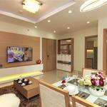 Cho thuê căn hộ full nội thất Him Lam Riverside quận 7 2 phòng ngủ 2 vệ sinh 63-74m2 giá 14 triệu