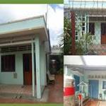 Bán gấp căn nhà cấp 4,mặt tiền đường Trần Văn Giàu, SHR,80m2/700tr