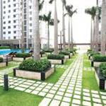 Central Premium căn hộ officetel có TTTM 6 tầng tính thanh khoản cực kỳ cao,