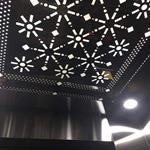 Mặt phố Thượng Đình, quận Thanh Xuân, 8 tầng thang máy, dt lớn kinh doanh siêu đỉnh