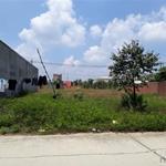 Chính chủ, cần tiền bán gấp 300m2 đất sổ riêng thổ cư ở BD dân đông.