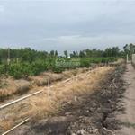 Bán trang trại 4062m2 có nền 466m2 đất thổ - đối diện KCN Tân Đức - LH 0938 502 089
