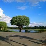 Đất thổ cư 100% Ngay Sân Golf Long Thành Đẳng Cấp Đất Nền 5 Sao