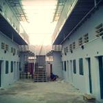 Bán  2 dãy phòng trọ 16 phòng , shr, đường nhựa 16m, CHỈ 1.7 TỶ/ 250m2