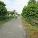 Chính chủ cần bán gấp lô đất vườn long thới,nhà bè,DT 800m2/1,1 tỉ gần đường long thới