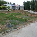 Tôi chính chủ cần bán gấp lô đất 250m2 shr thổ cư Đường Trần Văn Giàu mặt tiền 20m