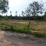 Đất MT đường Hùng Vương(7A), liền kề KCN Rạch Bắp, xây dựng ngay, giá chỉ 550tr/nền