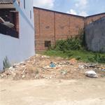 Đất giá mềm cho nhà đầu tư đường Trần Đại Nghĩa, Bình Chánh