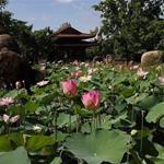 Bán khu du lịch 28ha Long Điền Sơn - Tây Ninh. Dự án sd đến 2058
