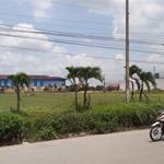 MT Lê Tấn Bê, SHR, chính chủ DT 80m2 thổ cư, xây dựng tự do