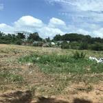 Bán đất nông nghiệp rộng hợp lí xây kho xưởng, P.Khánh Bình, Tân Uyên, Bình Dương