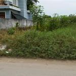 Bán đất SHR, 7x25m, giá 8tr/m2, MT Đinh Đức Thiện, sát chợ Bình Chánh,khu vực an ninh