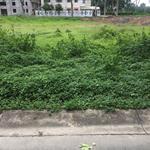 Ông tôi cần bán 125m2 gần đường Trần Văn GiÀU, so hong rieng