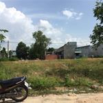 Chính chủ bán 300m2 đất TC, SHR, gần KDL  và dân đông  Bình Dương giá 485tr/nền