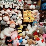 Cần Sang Gấp Shop Gấu Bông:   221B Phan Văn Trị , phường 11 , Quận Bình Thạnh: