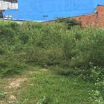 Cho thuê khu đất đẹp 244m2 ngay MT 8m Nguyễn Thị Thử Hóc Môn Lh Ms Thanh 0788985044