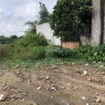 Bán đất 1/ Võ Văn Vân, Vĩnh Lộc B, Bình Chánh, LH 0906 014 539