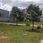 Cần bán gấp 300m2 đất thổ cư, SHR, ngay chợ và trường học trong KĐT đông dân