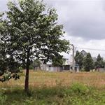 Khu đất tiềm năng đáng để đầu tư với tỷ suất sinh lời cao đến 50%/năm, giá hấp dẫn chỉ 560tr/nền