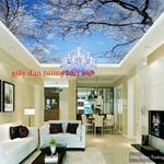 Bán nhà mặt tiền đường Trần Kế Xương quận Phú Nhuận, DT 4.3x18m, 3 lầu, 11.5 tỷ. thương lượng
