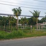 Đất Bình Chánh, Sổ Hồng Riêng, Thổ Cư 100%, 950tr/125m2 Sang Tên Ngay
