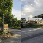 Bán đất gần KCN Bon Chen Bình Tân sổ hồng 950tr mt 21m