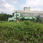 Chính chủ bán lô đất gần BV Chợ Rẫy 2, SHR, cách MT Trần Văn Giàu 30m. 5x20m, 800tr