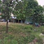 Đất gần khu công nghiệp Vsip 2 trong khu dân cư hiện hữu 300m2 giá 650 triệu