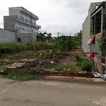 Bán Đất Mặt Tiền Đường Nhựa 16m Gần Cầu Bà Lát Bình Chánh, Khu Dân Cư Hiện Hữu, Shr
