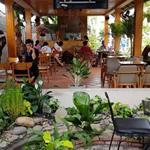Không Người Quản Lý.Cần Sang Gấp Quán Cafe:quán cafe thiết kế đẹp ở Thủ Dầu Một Bình Dương