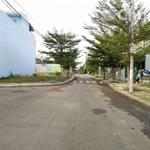 Sang lô đất chính chủ 100m2/800TR thổ cư có sổ hồng riêng trên đường Đinh Đức Thiện Bình Chánh