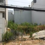 Bán đất100m2 đường Đinh Đức Thiện Bình Chánh giá 800(ảnh thật 100%) đường 15m