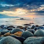 Căn hộ nghĩ dưỡng cao cấp cho thuê Condotel view bờ biển Quy Nhơn