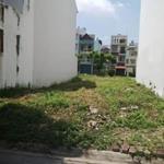Tôi cần bán lô đất ở Bình Chánh - Tỉnh Lộ 10 - Trần Văn Giàu, SH riêng 750 tr/125m2