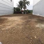 Nhà kẹt tiền cần bán gấp 130m2 đất ngay đường đại lộ Long An, shr